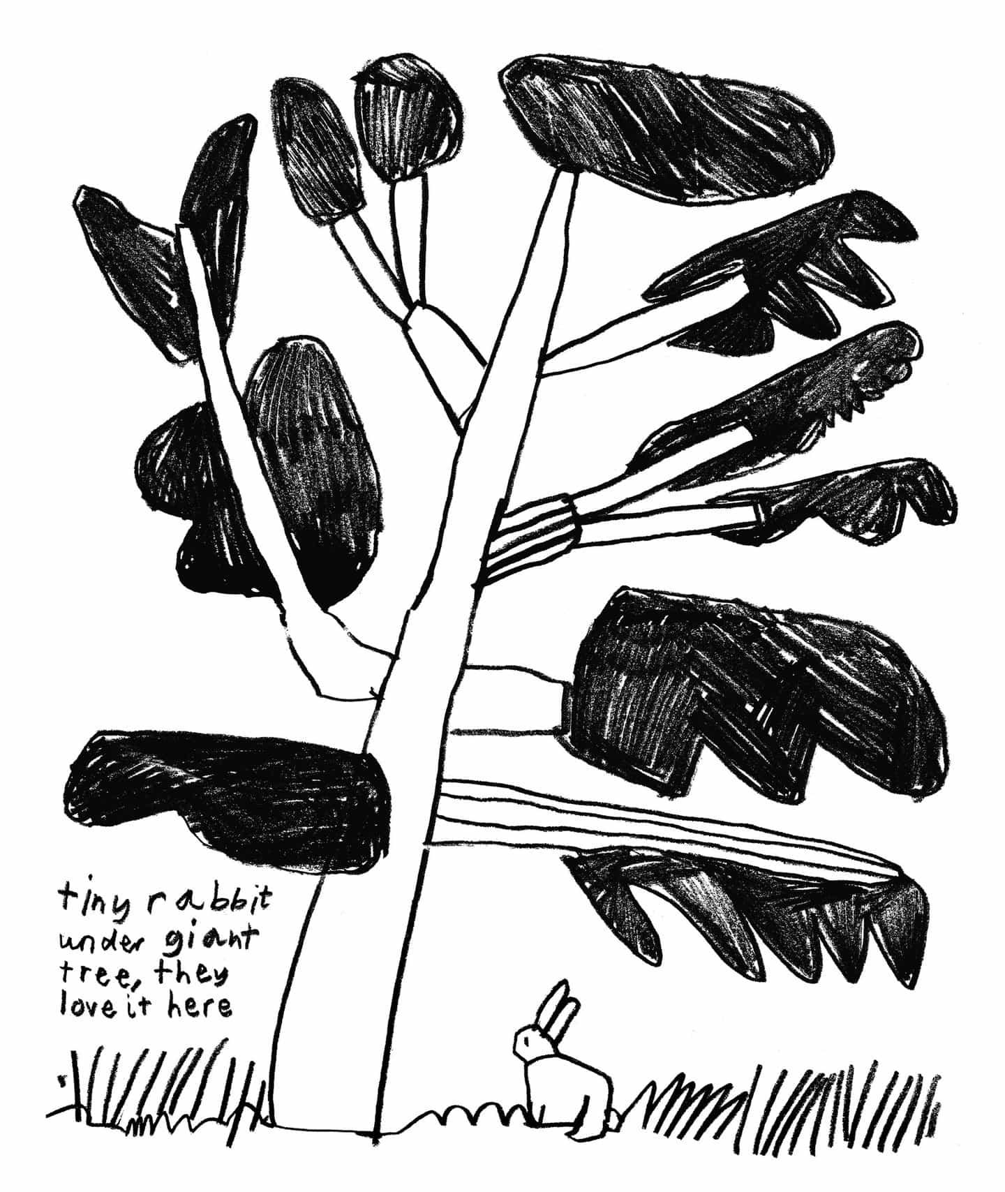 Conozca el portafolio infantil de la ilustradora Cara Rooney, donde la naturaleza, la curiosidad y el juego se combinan