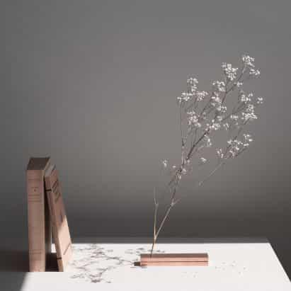 de Moisés Hernández No se muestra florero flores sin un contenedor