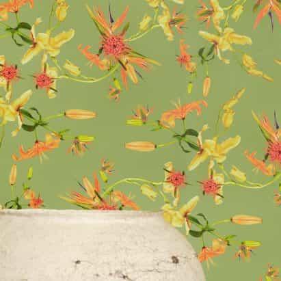 patrón Paradise cuenta en la recolección de fondos de escritorio de Florescence Superflower