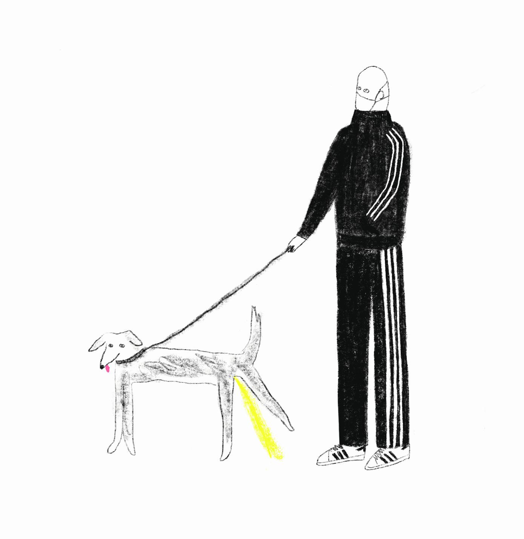 Weeing de perros