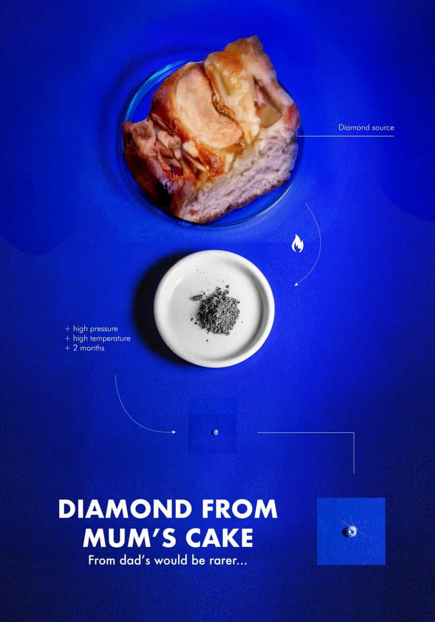 Lo que los diamantes son por Aniela Fidler