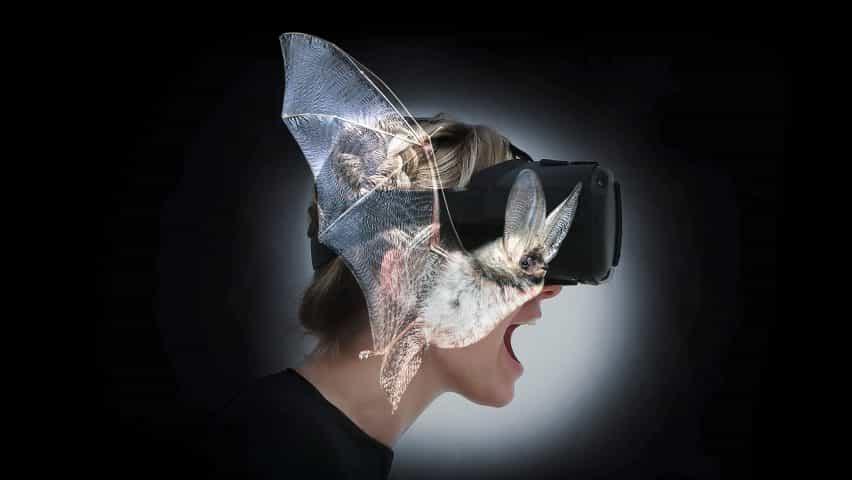 Batvision - por Rafael Grosjean y Eliane Zihlmann con el espacio inmersivo Artes de ZHdK