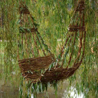 Gerardo Osio teje silla en sauce llorón en el río Dommel