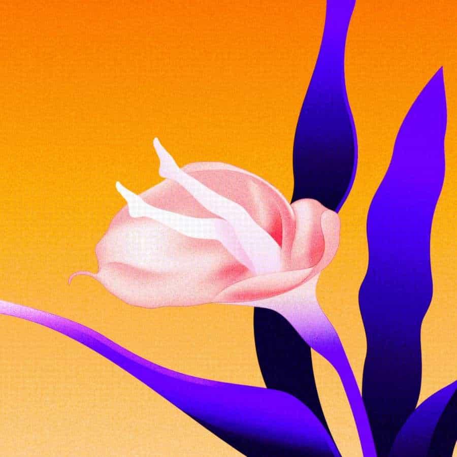 Chen Wu compartió una colorida colección de animaciones simples pero asombrosas en un bucle sin fin. Van desde el humo hasta las sombras, todo muy sutil pero bastante bien ejecutado. Un trabajo como este le da una vida aún más larga al formato GIF, una de las pocas cosas que realmente han resistido la prueba del tiempo. Mantenga su 🔥