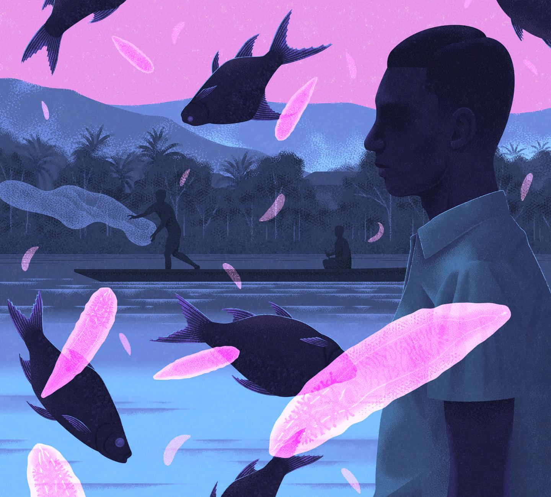 Introduzca premios World ilustración de este año y celebrar el medio en todo su esplendor