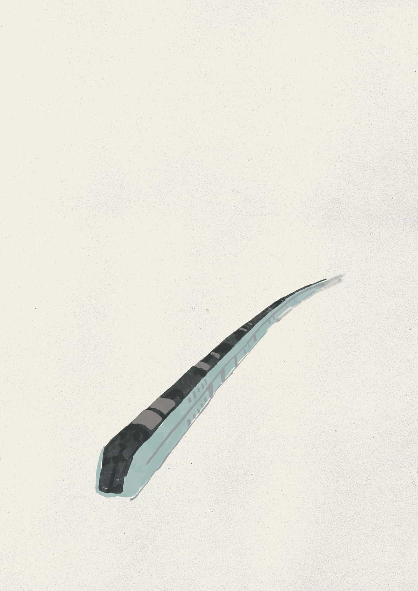 Sara Laimon alias Galleta de la luna en sus ilustraciones de encierro de los trenes y los luchadores