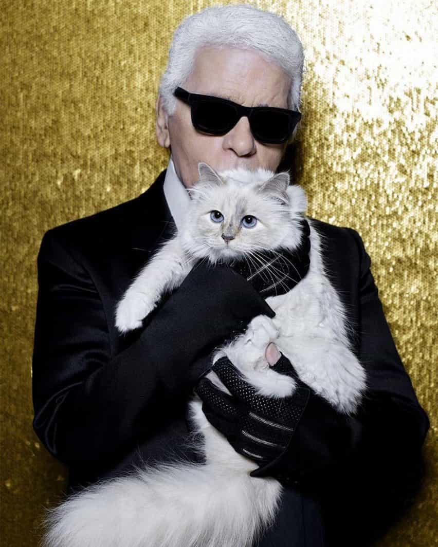 Choupette fue el amado gato del fallecido diseñador de moda Karl Lagerfeld