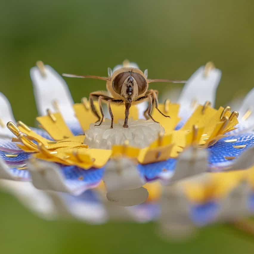 refugios urbanos siete para las abejas que viven en las ciudades