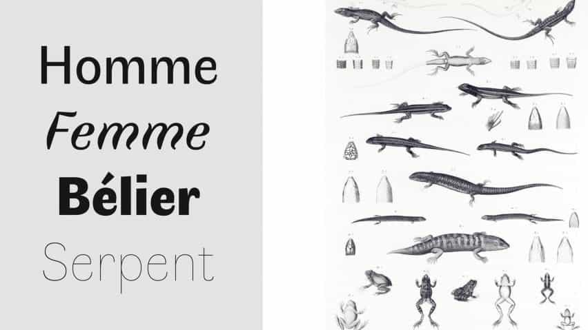 Boulanger explica cómo percibimos diferentes tipos de letra