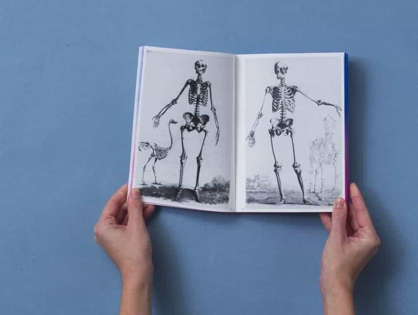 Dos esqueletos anatómicos del científico John Barclay
