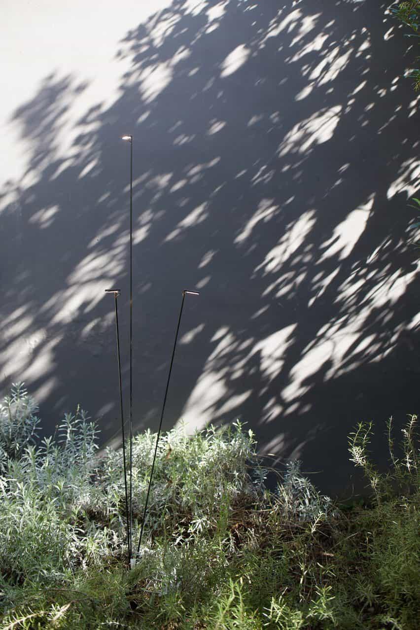 La luz se reúne con otra luz en un mundo invisible.