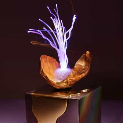 Aia JUDES fusiona excrecencias de árboles y fibra óptica para hacer lámparas extravagantes