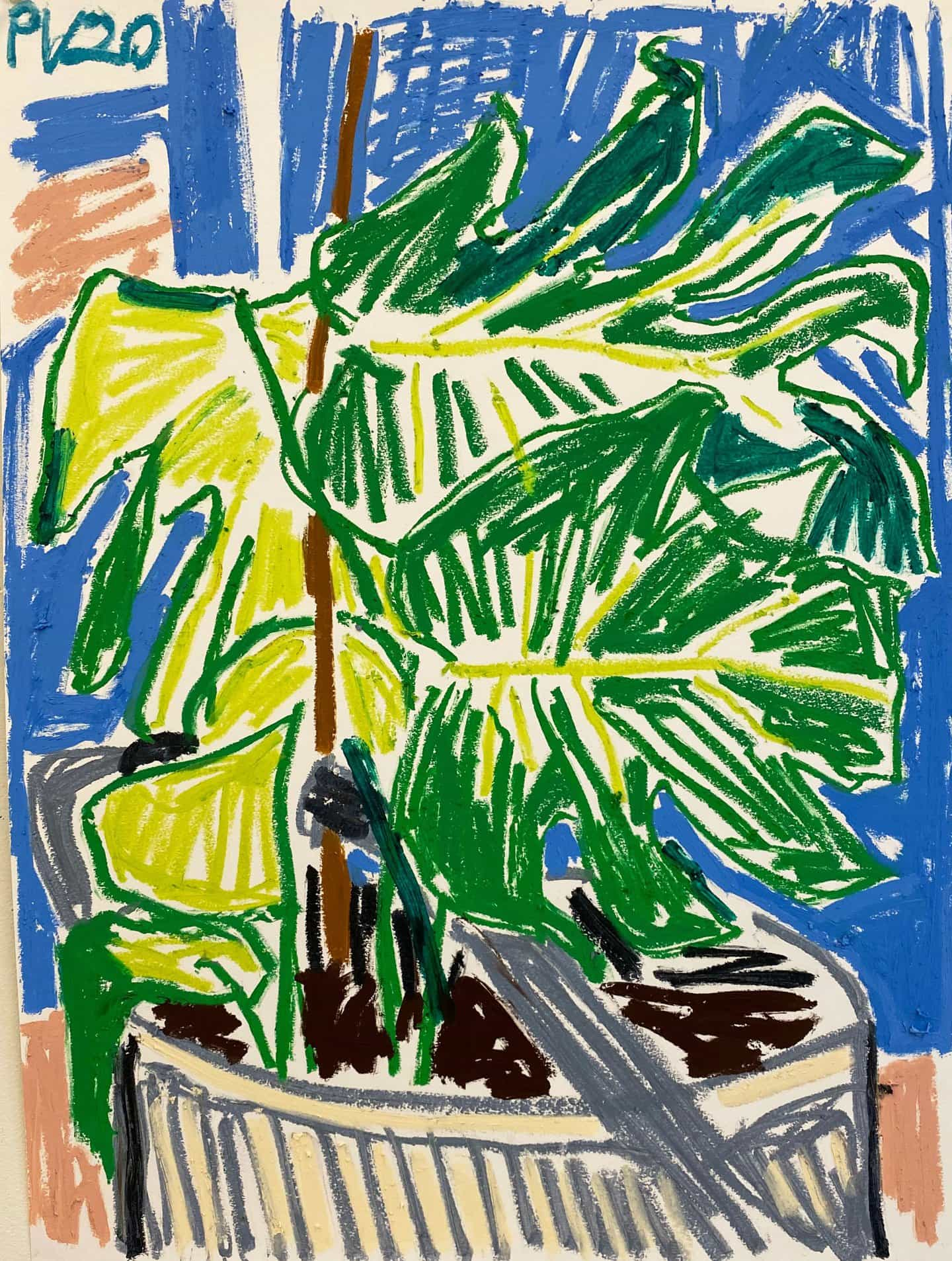 Paul Verdell: Planta dentada (Copyright © Paul Verdell, 2020)