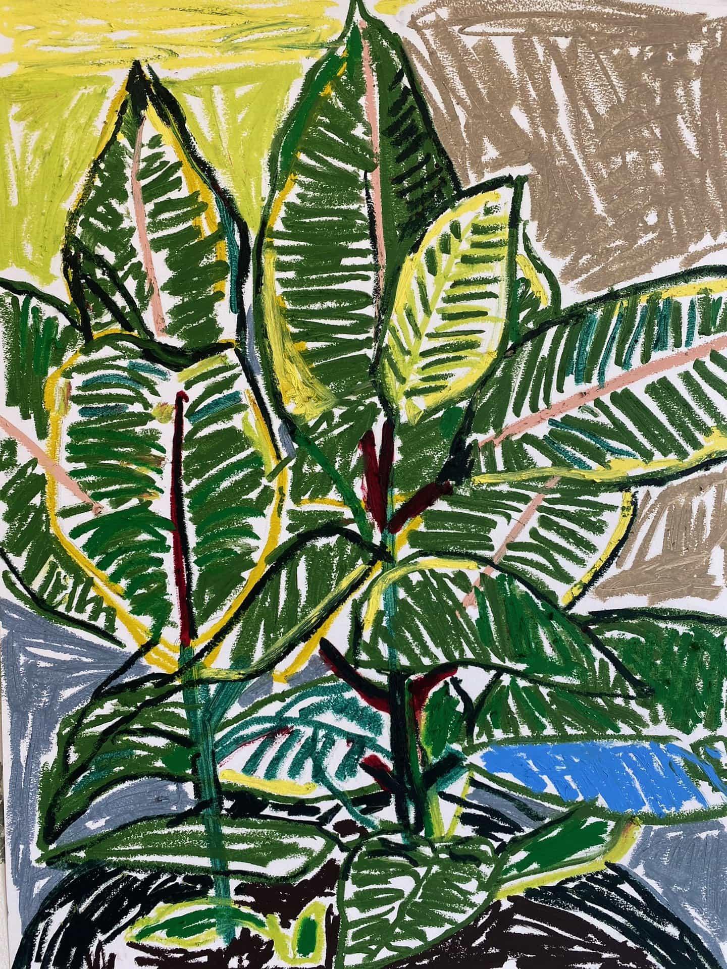 Paul Verdell: Planta de caucho (Copyright © Paul Verdell, 2020)