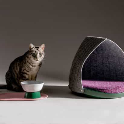 Capa y persona del gato diseño de muebles mezcla y combinación de los felinos