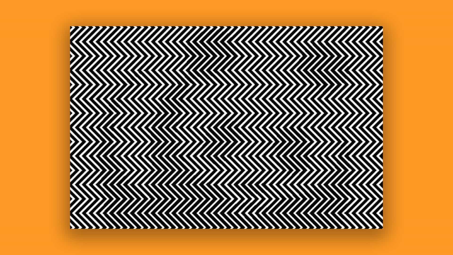 La ilusión óptica alucinante con un mensaje serio