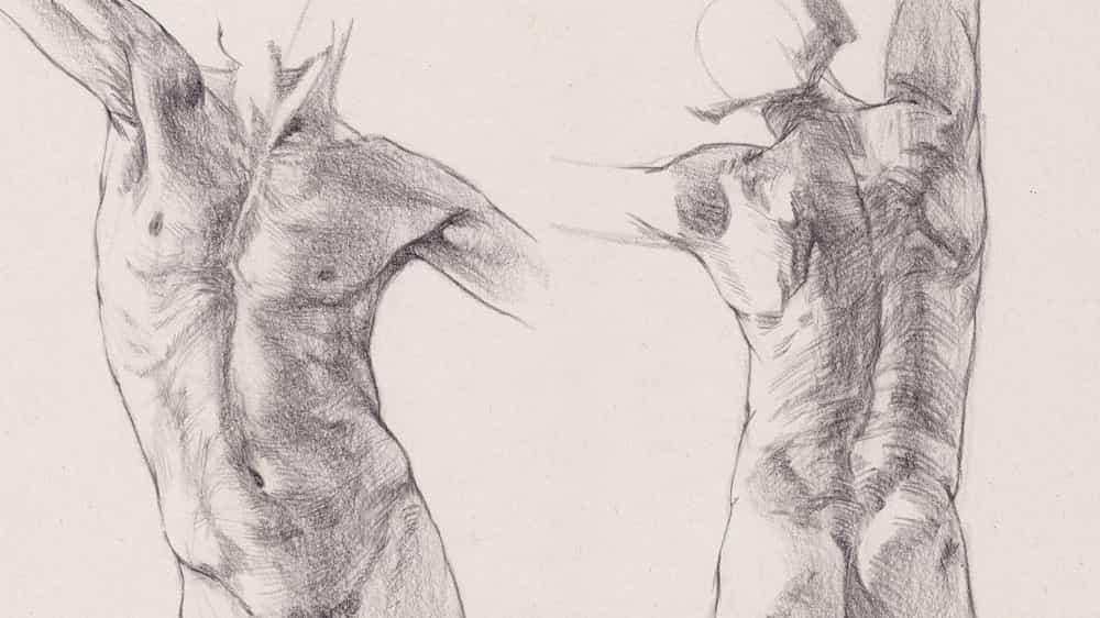 Cómo dibujar un torso