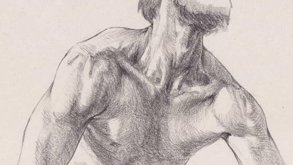 Cómo dibujar un cuello y hombros.
