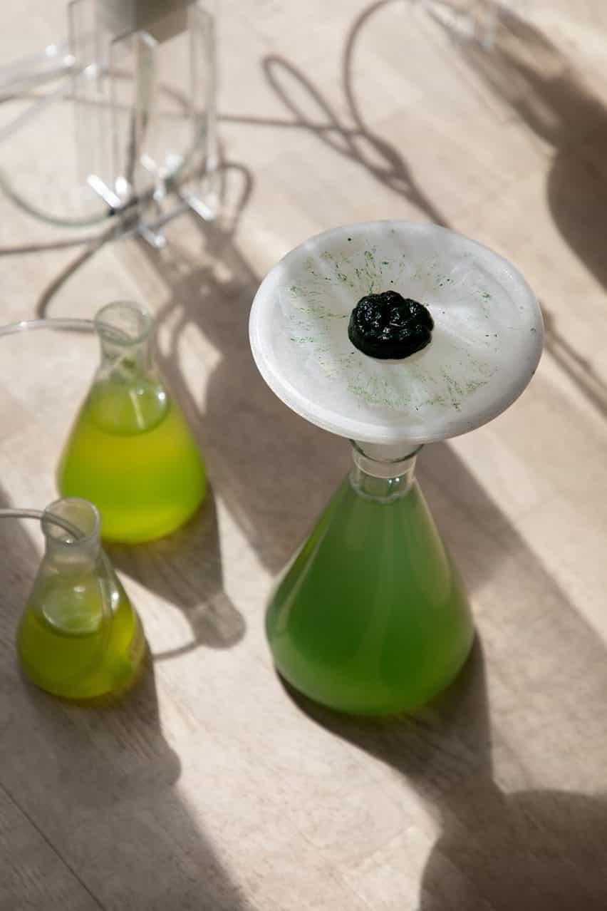 BioBombola por ecoLogicStudio