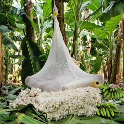 """Erez Nevi Pana diseña """"capullos"""" de plantas de banano para que los humanos se refugien del cambio climático"""