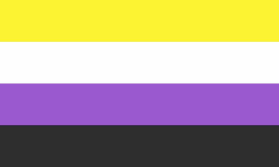 Bandera nonbinary