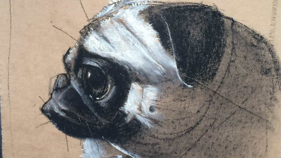 10 consejos de expertos para dibujar con carboncillo