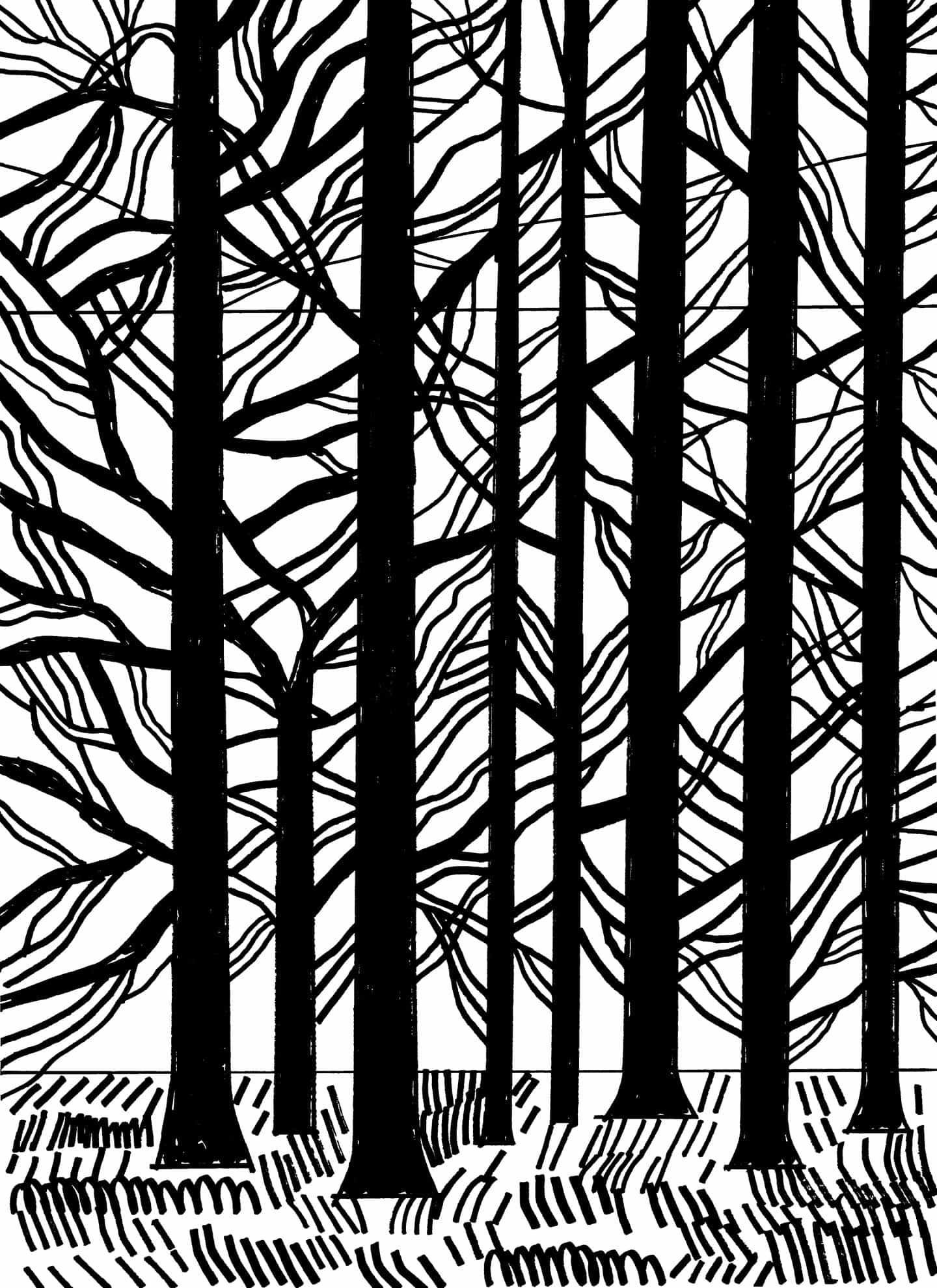 Marcus Oakley: Morlich maderas
